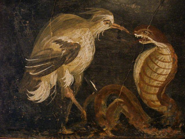 """""""Affreschi romani - airone e cobra - pompei"""" by Stefano Bolognini - Wikimedia Commons"""