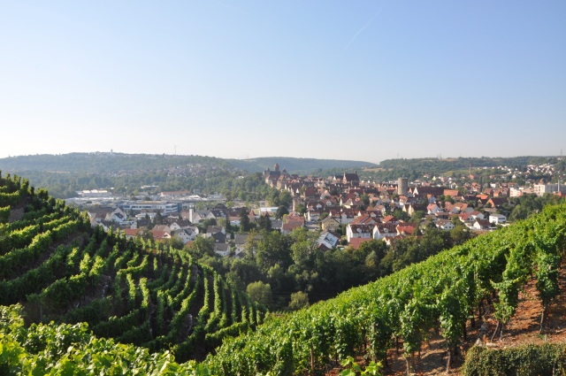View of the village from the top of the vineyards, mom's house in the middle