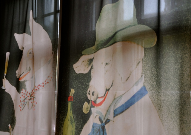 A somewhat disturbing visit to the largest pig museum in the world